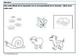 estimular atención educación infantil 17