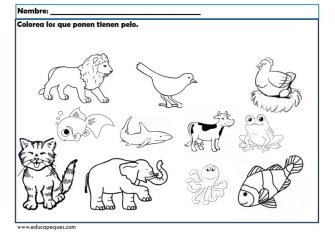 infantil animales_007