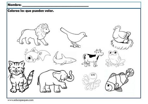 infantil animales_010