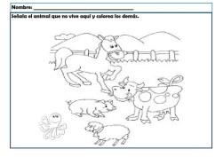 infantil animales_018