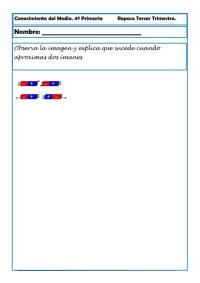 4 primaria 3cono_019