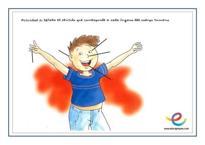 cuidados del cuerpo humano dibujos para colorear