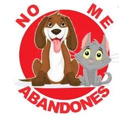 no al abandono animal