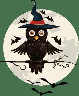 Buho halloween