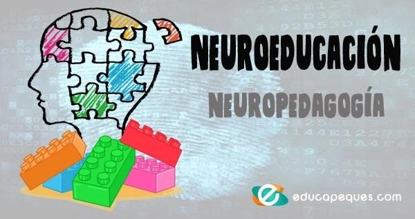 Neuroeducación, neuropedagogía