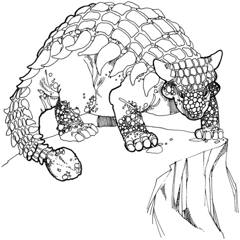 Anquilosaurio para colorear