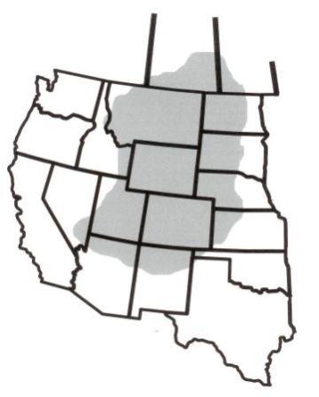 Extent of Navajo Sandstone