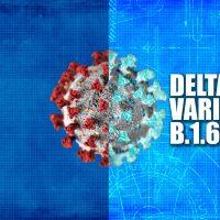 Natural Immunity vs. Vaccines vs. the Delta Variant