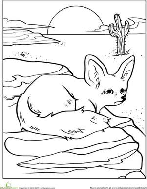 Desert Fox Coloring Pages Coloring Pages