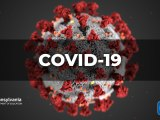 Coronavirus Guidance And Resources For School Communities