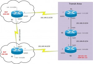 BGP lab topology