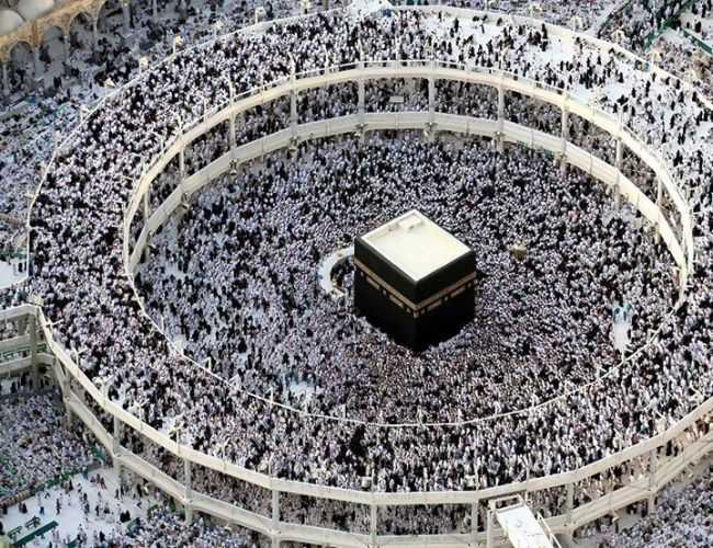 How many animals are sacrificed in a day in Hajj