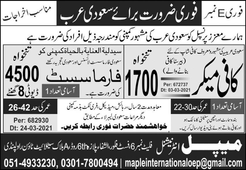 Maple International Jobs 2021 Apply Online