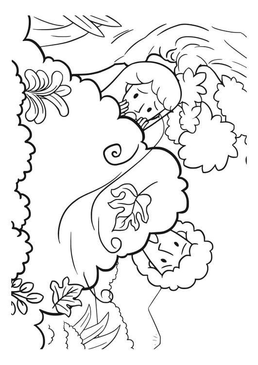 Dibujo Para Colorear Adn Y Eva
