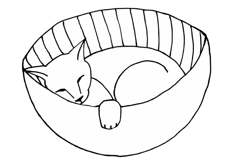 Immagini Di Animali Domestici