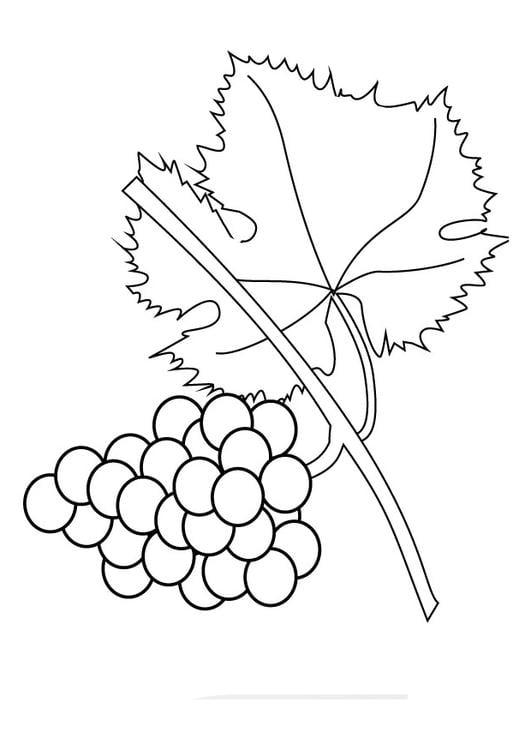 Desenho De Piu