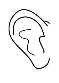 Disegno da colorare orecchio - Cat. 26932.