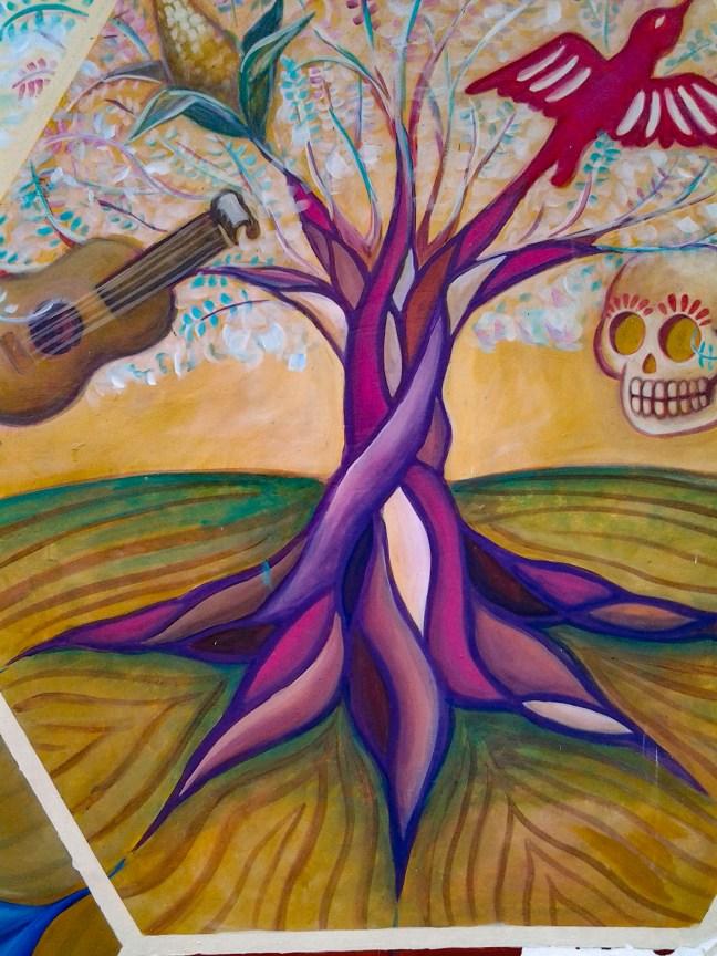 Las raíces Xalapa, Veracruz, México