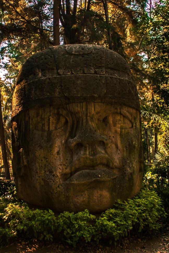 <em><strong>Parque Hundido</strong>     Mexico city, CDMX, Mexico</em>