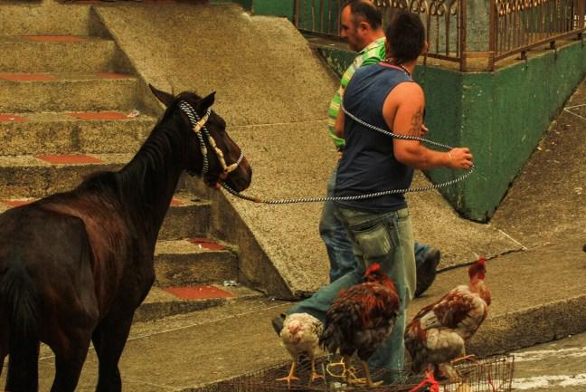 Vida del pueblo Neira, Caldas Colombia