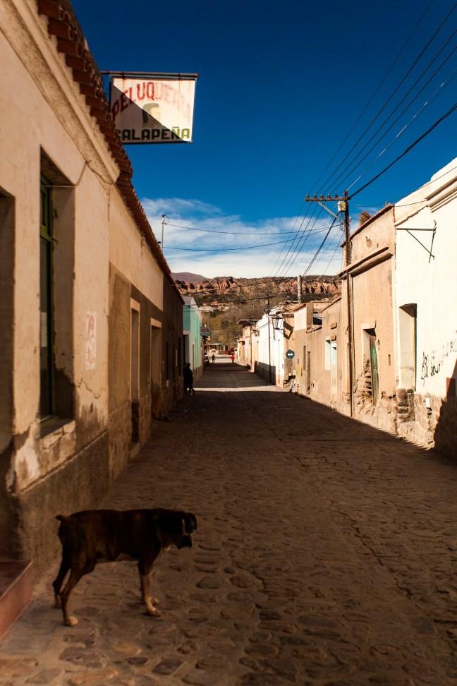 Teo en la calle Salta Humahuaca, Jujuy, Argentina