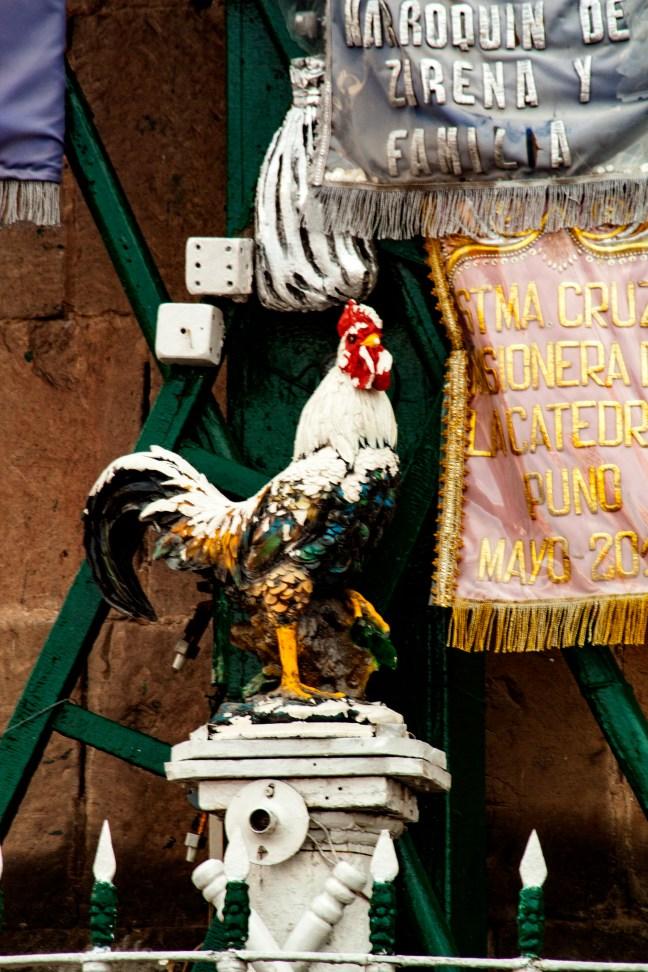 El gallo ciudad de Puno, Puno, Perú