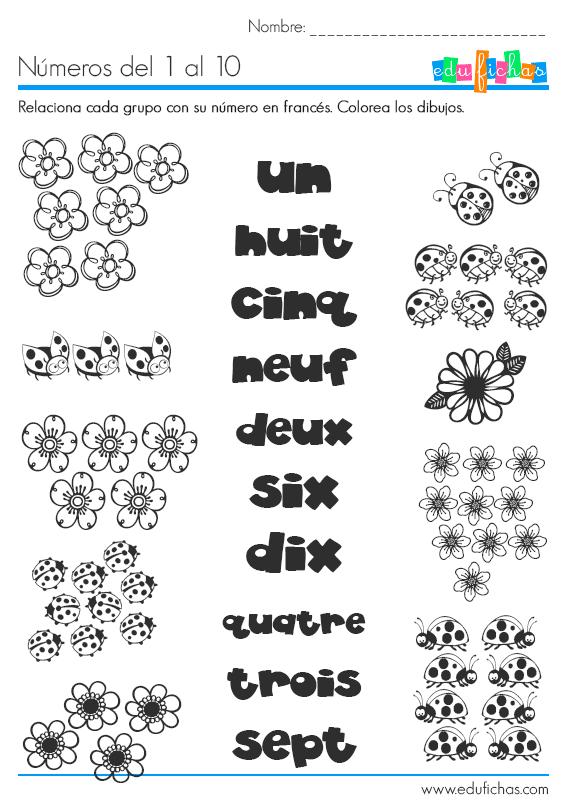 Números en francés. Ficha coloreable con ejercicio para niños