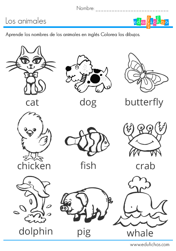 Inglés básico para niños. Fichas infantiles en inglés