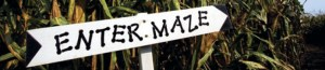 cropped-What-to-know-about-Corn-Maze.jpg