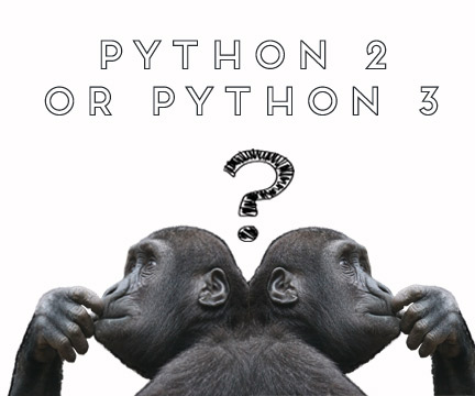 Making a choice between Python 2.x and Python 3.x