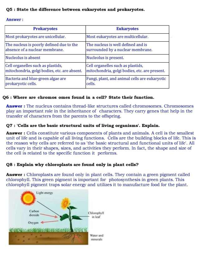 Ch-8 Cell - Structure and Functions- Page wise NCERT ...