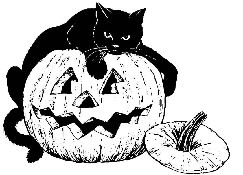 coloring page black cat on pumpkin  img 16101.