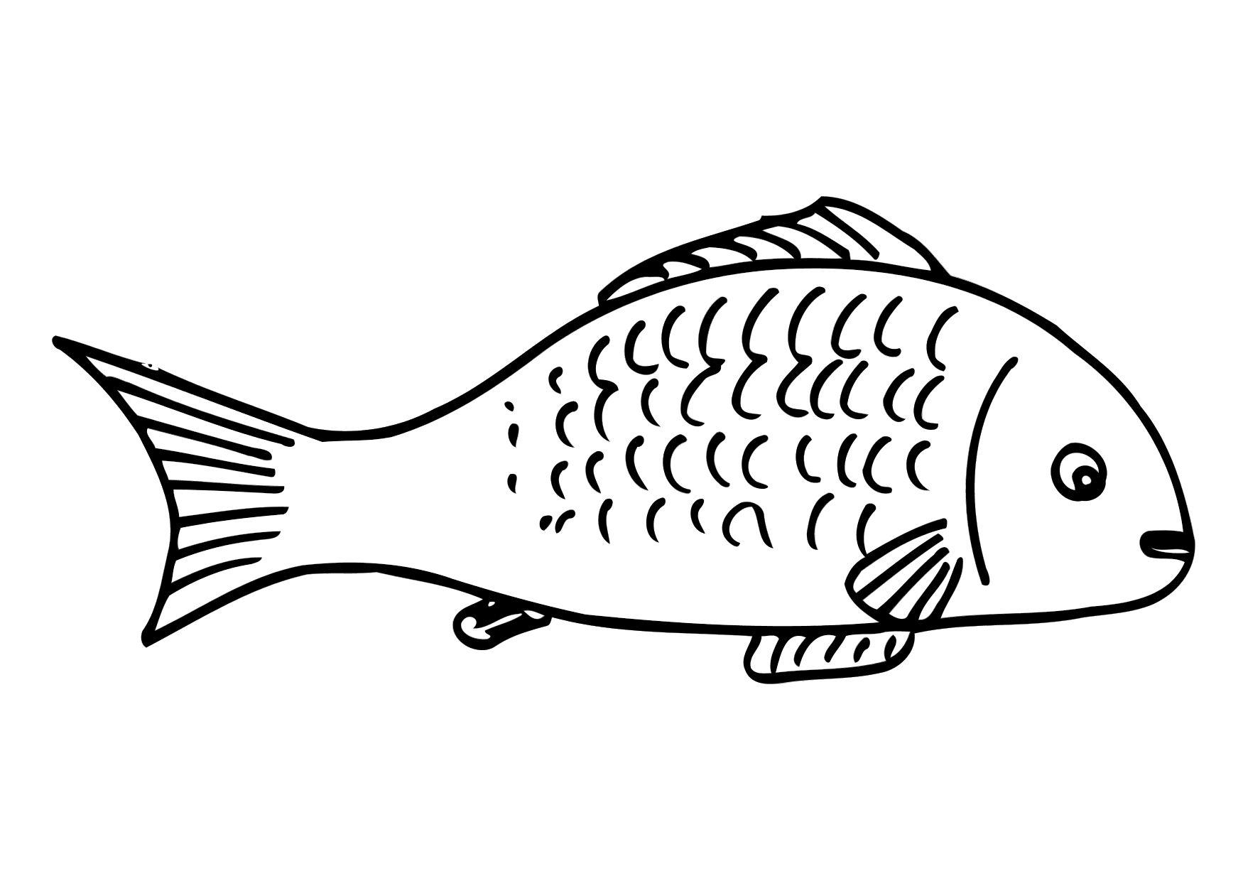 Coloring Page Fish Img 12502