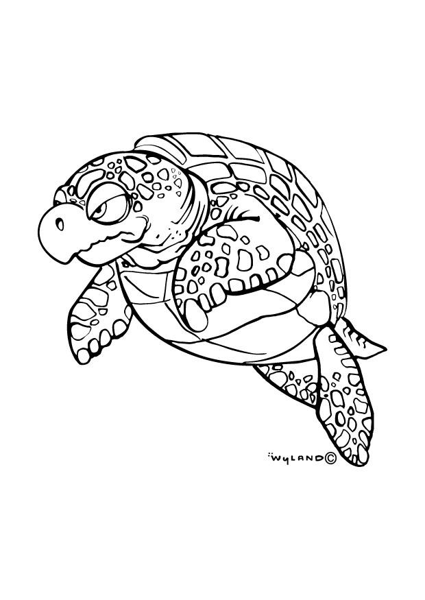 Coloring Page Sea Turtle Free Printable Coloring Pages
