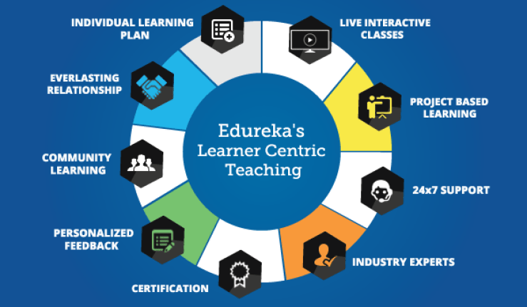 Edureka Digital Marketing Course Review - Learning Techniques