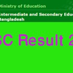 Dhaka Board SSC Exam Result 2017 dhakaeducationboard.portal.gov.bd