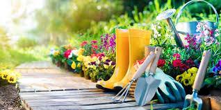 Black Gold Fall Vegetable & Herb Garden Giveaway