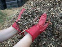 Mulch made from shredded yard waste in a munic...