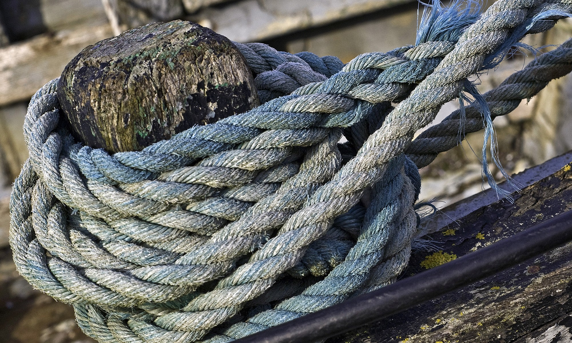 Blue Rope Detail at the Harbor