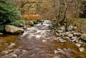 Aira Beck, Ullswater, Lake District