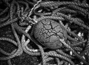 Monochrome Rope and Buoy Detail