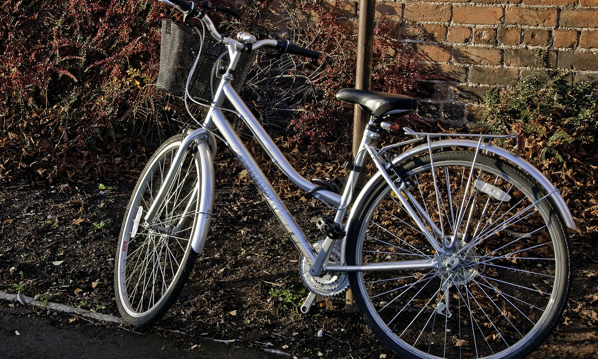 Silver Push Bike