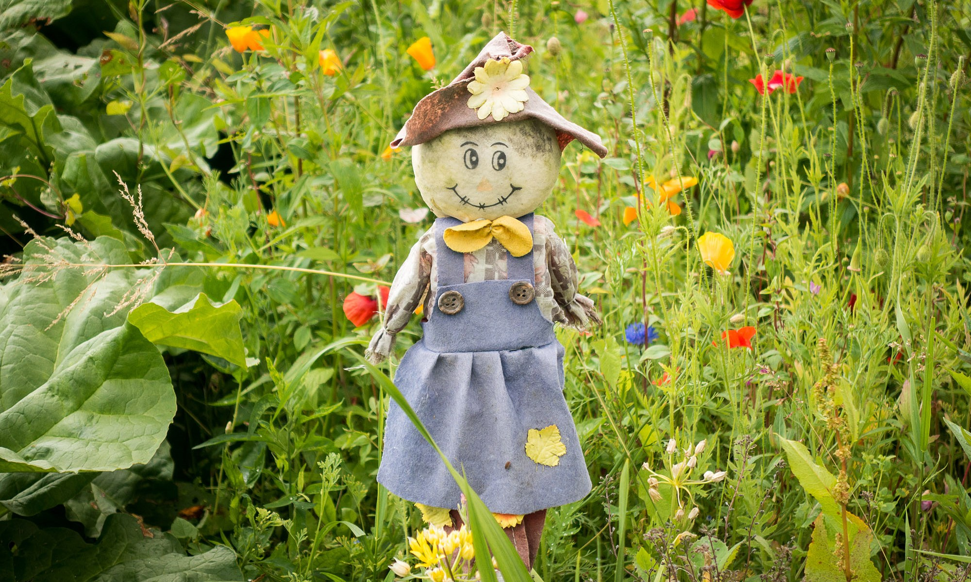 Homemade scarecrow doll