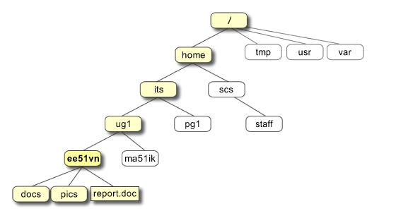 directory tree diagram 1963 impala radio wiring unix tutorial one file structure