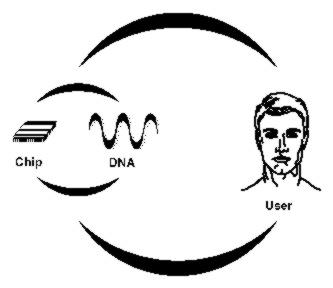John-Thones Amenyo: Engineering DNA Computer Architectures