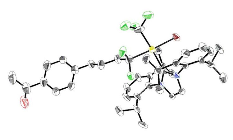 Chemical Compounds Prove Useful Drug Development