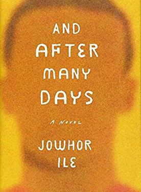 #BookReview: And After Many Days by Johor Ile