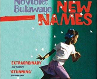 """Before You Read """"We Need New Names"""" by NoViolet Bulawayo, Here's What We Think"""