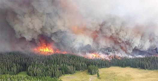 Wildfire. Photo credit: National Park Service/Wikipedia