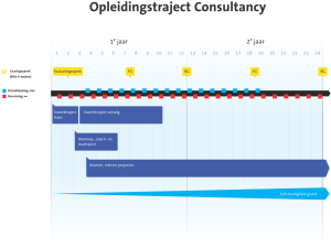 Opleidingstraject Consultancy